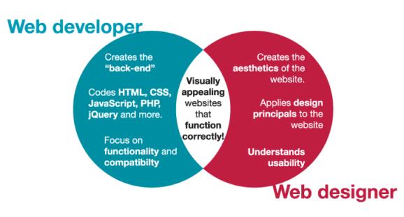 Developer vs. Designer